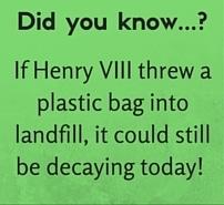 Henry VIII plastic bag fact